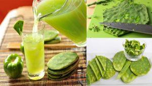 Licuados de nopal para controlar la glucosaEl nopal es un alimento verde parecido a la tuna de grandes propiedades naturales y que combate enfermedades.